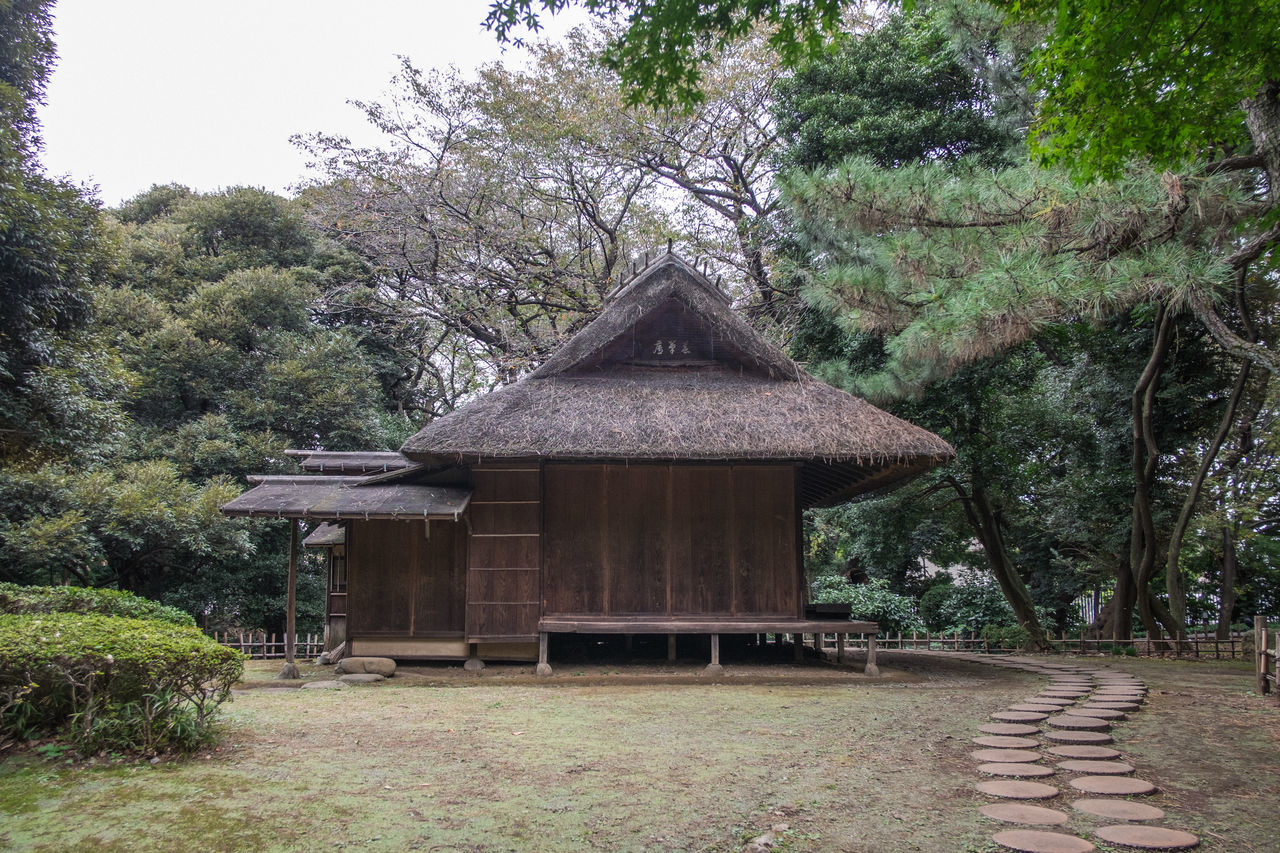 Architecture Beauty In Nature Built Structure Day Gazebo Growth Nature No People Outdoors Tokyo Tokyo National Museum Tokyo Street Photography Tokyo,Japan Tranquility Tree Wooden