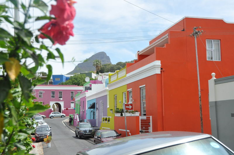 Architecture Bokaap Building Exterior Built Structure Car City Day Distrcic Flower Houses Multicolored No People Outdoors Road Sky