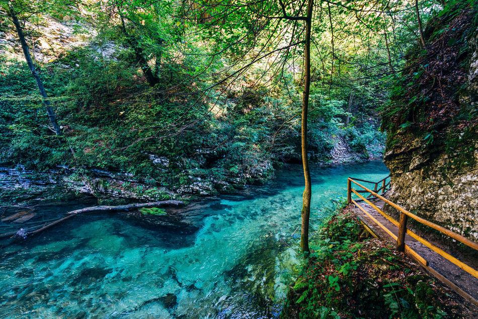 Blue Water Bridge Gorge Lake No Pepole River Slovenia Travel