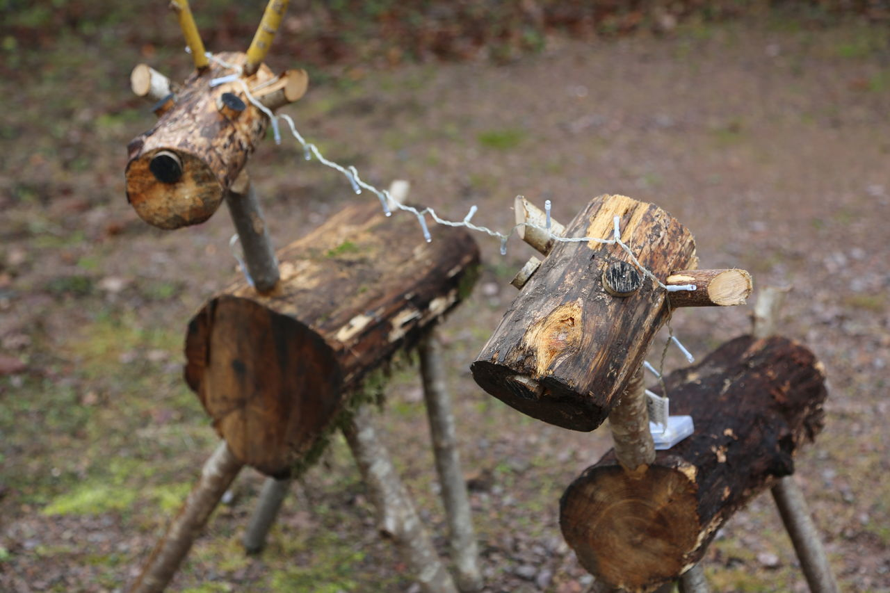 Animals Close-up Day Focus On Foreground Friends Lights Nature No People Outdoors Roe Deer Wooden Decoration