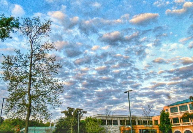 The sky being littered with clouds. Nature Cloud And Sky Morning Enjoying Life