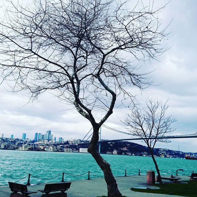 Kuzguncuk Istanbullovers