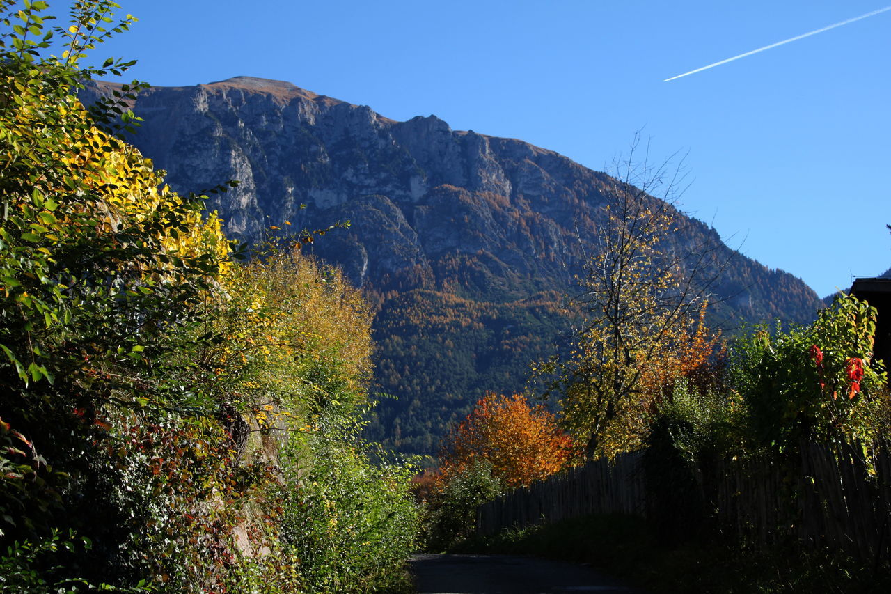 Autumn 2016 Beauty In Nature Blue Sky And Clouds Day Dolomites Fiè Allo Sciliar Italy Landscape Mountain Mountain Range Nature No People Outdoors Road Scenics Südtirol Trees And Bushes Vapor Trail