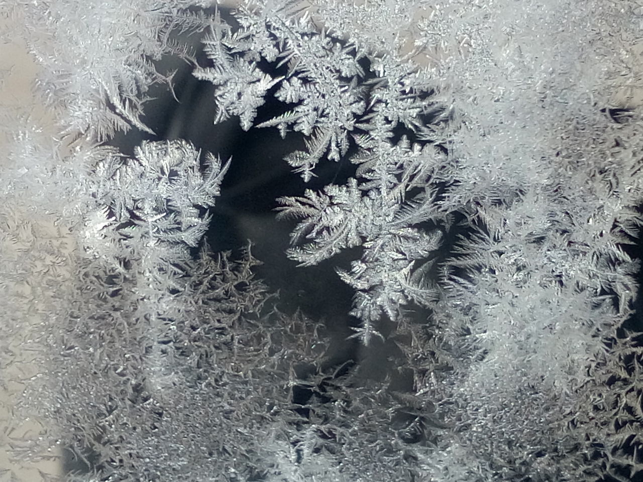 high angle view, no people, window, frozen, winter, close-up, cold temperature, indoors, day, nature, snowflake, plant, snow, fragility, christmas decoration, beauty in nature