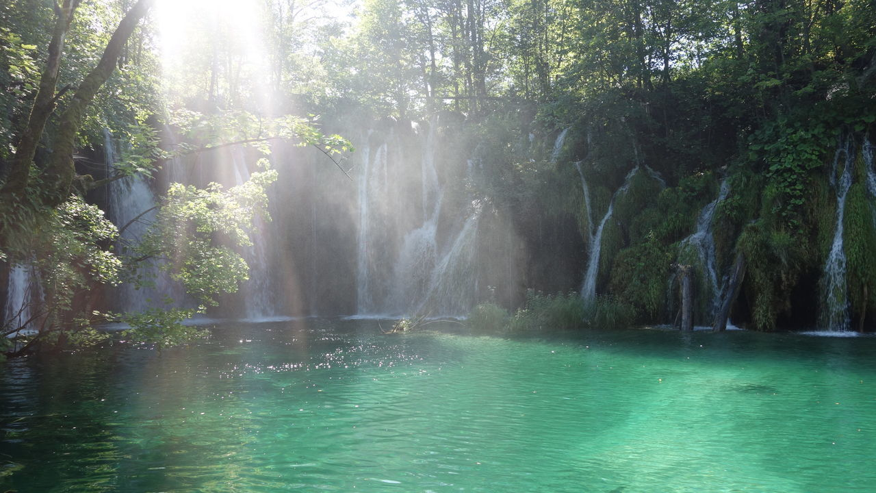 water, beauty in nature, tranquil scene, nature, tranquility, scenics, no people, idyllic, tree, day, sunlight, outdoors, waterfall, forest