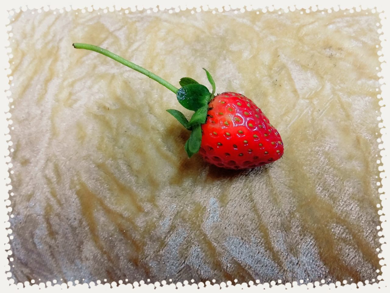 red, close-up, food and drink, fruit, food, no people, healthy eating, freshness, indoors, day, nature