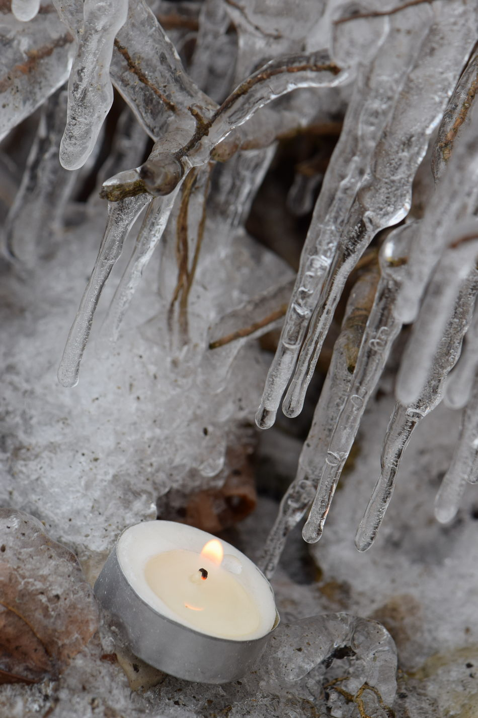 Beautiful Nature Branches Candle Fire & Ice Flame Frozen Frozen Nature Ice Ice Cycles Icy Lit Candle Macro Nature On Your Doorstep No Edit/no Filter Showcase February Tealight Twigs Winter Candle Light Fire And Ice Literalism Literally