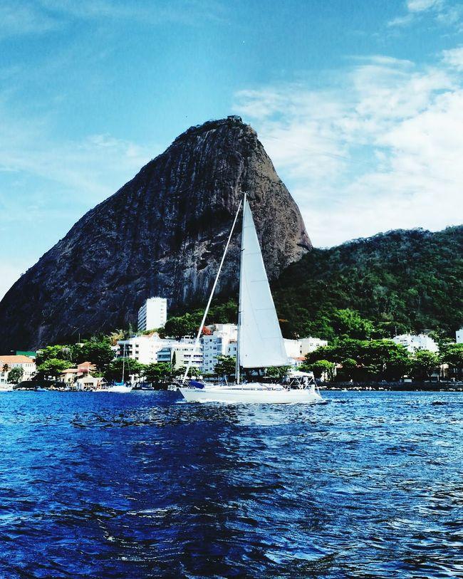Sailing Boats Sugar Loaf Sugarloaf Barcos Verleiros