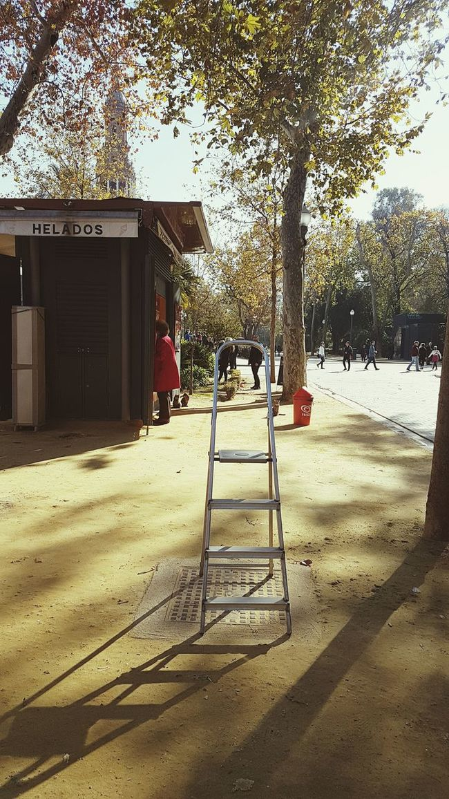 Seville SPAIN Ladder To Heaven Tree Outdoors Shadow Nature No People Sunlight Day Climbing The Ladder Climb Steps City Unusual Perspective City Life Seville Plaza De Espana Unexpected Blocked Path Aspiration Ambition Odd Place Unusual Unexpected Green
