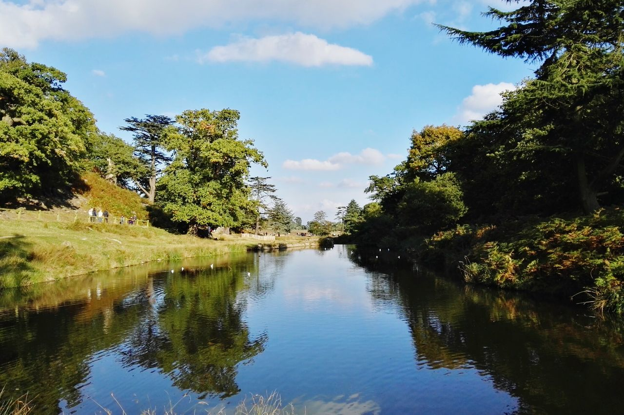 Tree Water Sky Tranquil Scene Tranquility Scenics Cloud - Sky Reflection Growth Non-urban Scene Nature Beauty In Nature Cloud Day Green Color Waterfront Calm Outdoors Canal No People Bradgate Park Bradgatepark Country Park Beauty In Nature Landscape