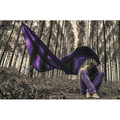 Sahasrara. Chacra Fotoxigenio Parededevidro Nikon Nikontop @nikontop @instagram Photoart Forest Purple