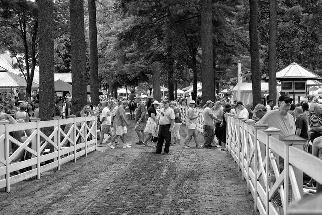 Monochrome Photography Fujilove Fujifilm Monochrome Blackandwhite Black & White Black And White Photography People And Places Saratoga Ny Fuji Xt10 Taking Photos Fuji Saratoga Springs Saratoga Race Course Saratoga