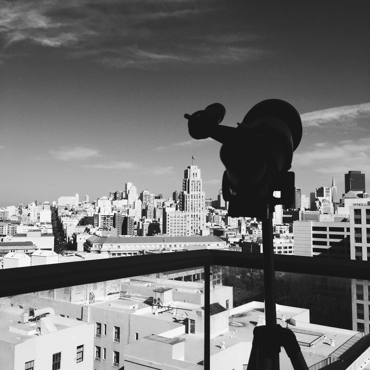View of San Francisco, USA. Animal Themes Architecture Black And White Building Exterior California City Cityscape Cloud - Sky Day IPhone IPhoneography Mammal Nature No People One Animal Outdoors San Francisco Sky Sky And Clouds Square Telescope USA