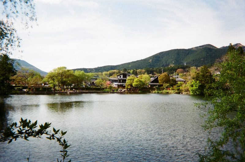 Kumamoto Prefecture Temple Park in japan Kumamoto Prefecture Temple Park Lake Japan Tradition Traveling Film Photography No Filter