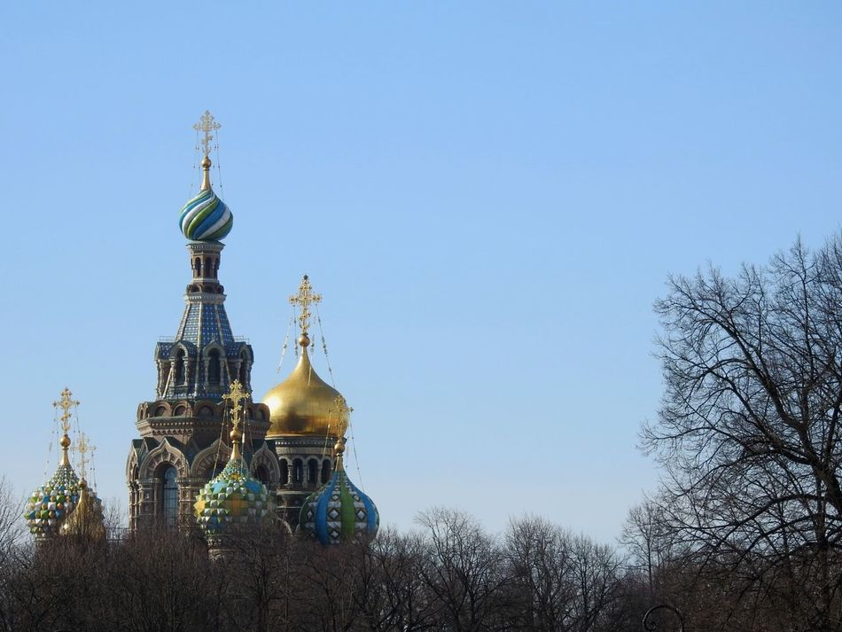 Clear Sky Sky Architecture City Day Trees Church Dome Sunny Day 🌞 My City View My City My Love EyeEmNewHere Walking Around Architecture Building Exterior City St.Peterburg Yards Sunlight Colors Of Sankt-Peterburg Sankt-Petersburg Russia