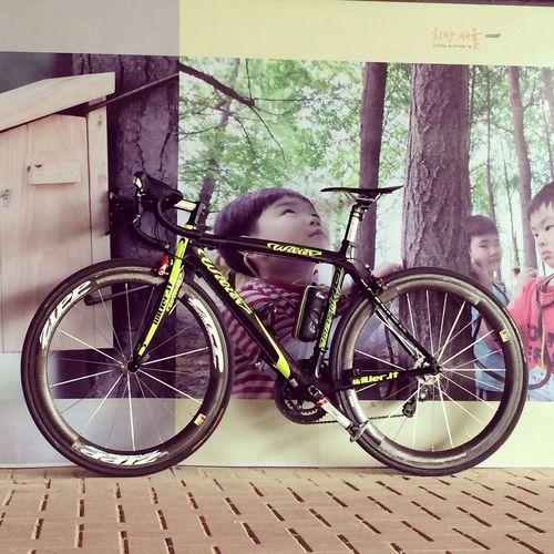 Wilier Roadbike Ride Zipp 한강리이딩~? wilier shimano105/garmin810 /zipp404/kohosis/camelbak/RUDY
