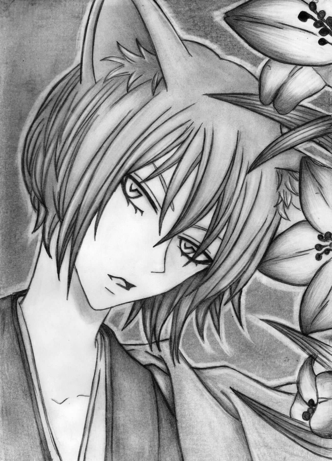 Drawing Black & White Pencil Drawing Tomoe Gitsune Kamisama Hajimemashita
