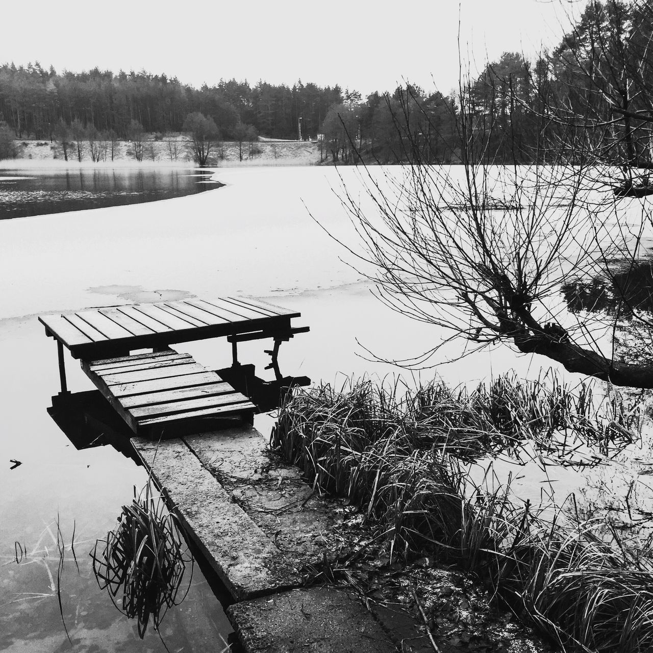 Landscape Landscape_Collection EyeEm Best Shots - Landscape IPSLandscape Nature_collection EyeEm Nature Lover Blackandwhite Black And White Black & White EyeEm Best Shots - Black + White