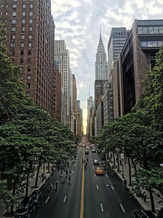Tudor City Tudorcity Myview Chrysler Building Capture The Moment Great Outdoors Great View Places I've Been Enjoying The View Enjoying Time Enjoying The Sights Enjoying The Moment Streetphotography Street Photography NYC Photography NYC Street Photography NYC New York Newyork My View Streetphoto Street Life Enjoying Life