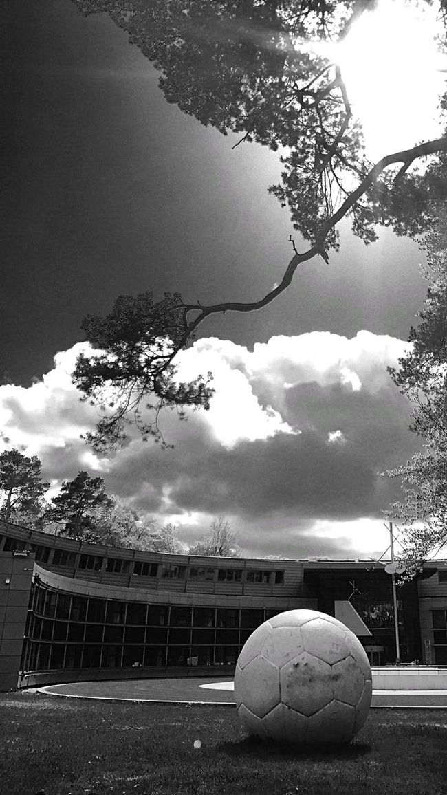 Blackandwhite Black And White Blackandwhite Photography EyeEm Best Shots B&w Taking Photos Outdoors Eye4photography  EE Love Connection! Eyemphotography Nature Photography Trees And Sky Naturephotography Nature_collection Beauty In Nature Football Clouds And Sky Sky Trees Sun Silhouette Monochrome