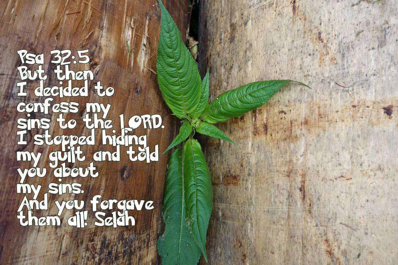 Text Green Color Bible Verses Bible Forgiveness Confession
