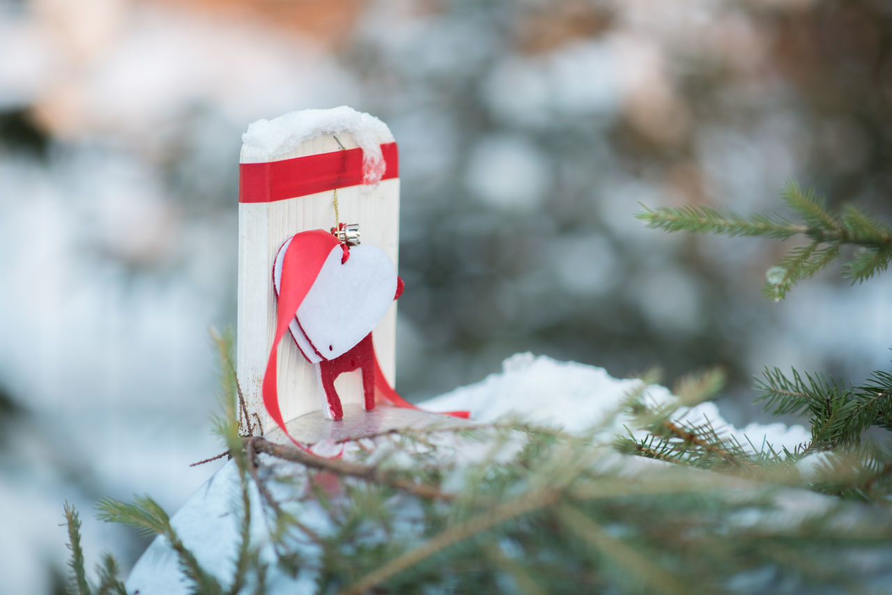 little heart Celebration Christmas Decoration Christmas Tree Close-up Cold Temperature Day Environment Evergreen Tree Extreme Weather Fir Tree Focus On Foreground Forest Holiday - Event Love Nature No People Outdoors Snow Snowman Tree Weather Winter