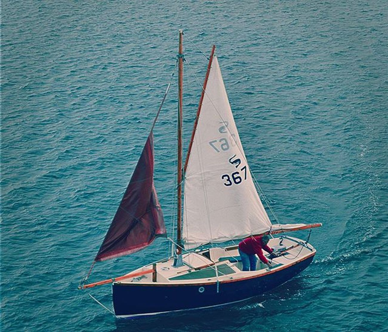 Seaview Sea Destinationdevon Plymouthhoe Plymouthsound Britansoceancity Plymouth Sailing Sailingboat Boats Bluesea Sea Nikond3200photography Thelensebible Daily_photoz Nikon Nikond3200 Lovephotography  Lifethroughalens Lovephotography  Photographylovers Devon Swisbest Southwestisbest Loveplymouth devonlife