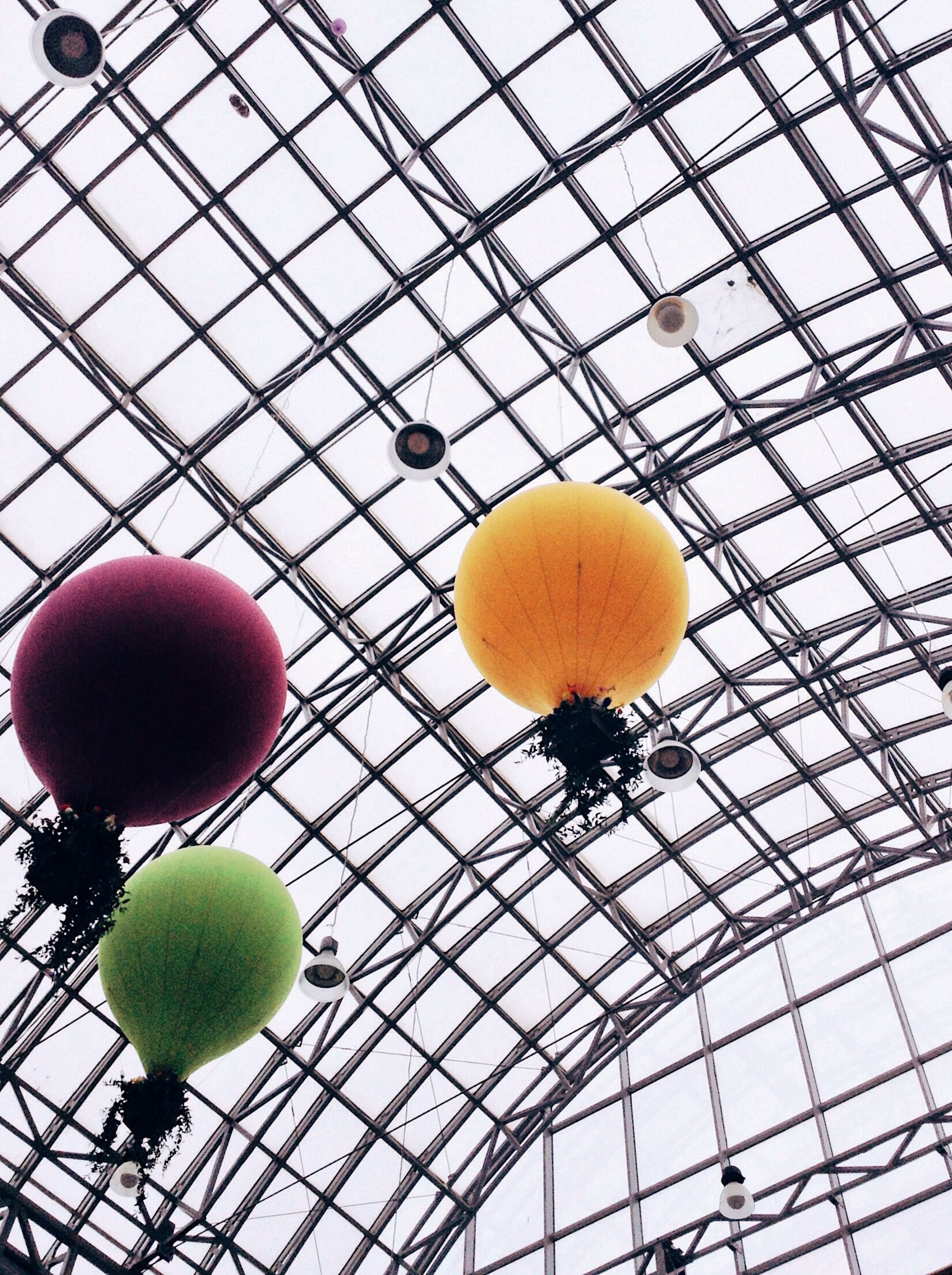 balloon, fruit, low angle view, yellow, hanging, no people, day, close-up, tree, outdoors, sky