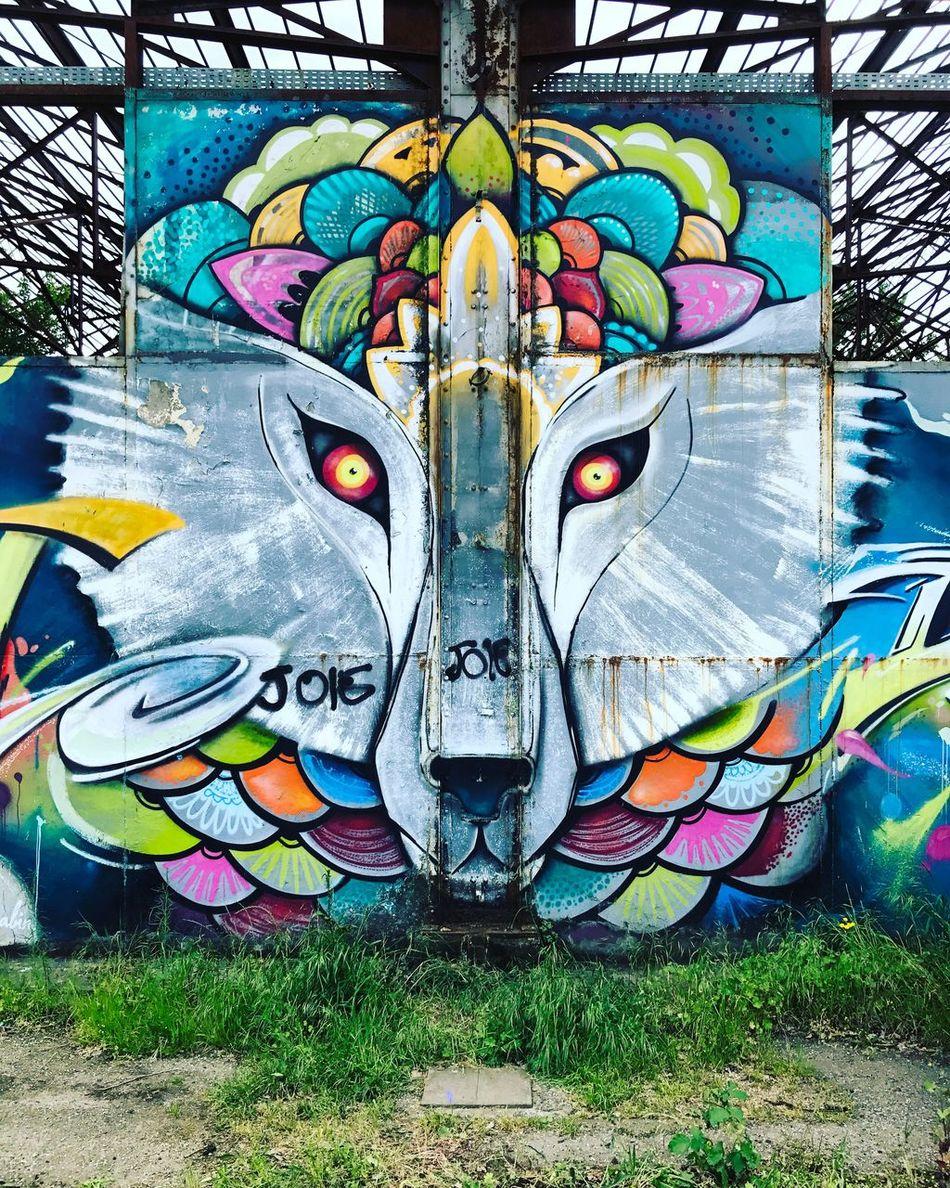 Multi Colored Graffiti Art And Craft Creativity Animal Representation Day Outdoors Street Art No People Close-up