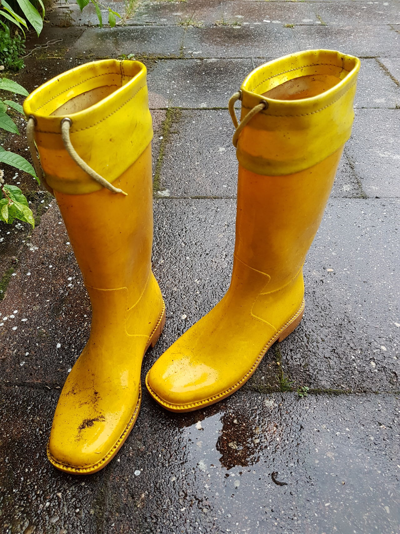 Rubber Boots Yellow Rubber Boots Woman Shoes Yellow Rainy Day Rain Pair No People Day Outdoors