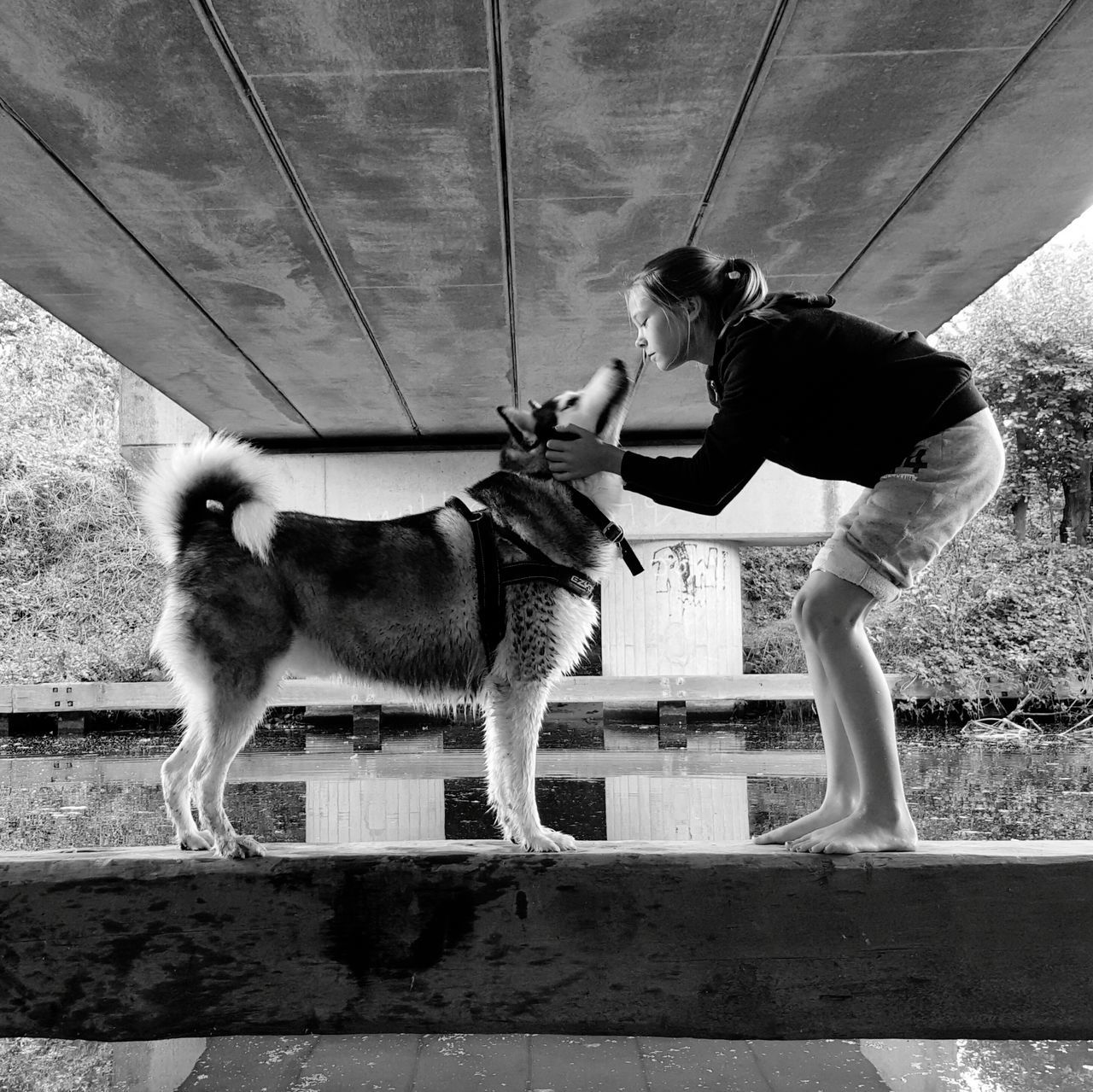 Walking The Dogs Outdoors Husky ♡ Canal Water Daughter Balance Bridge
