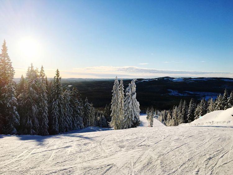 Sweden Rommé Winter Snow Ski Skiing White Mountain Nature