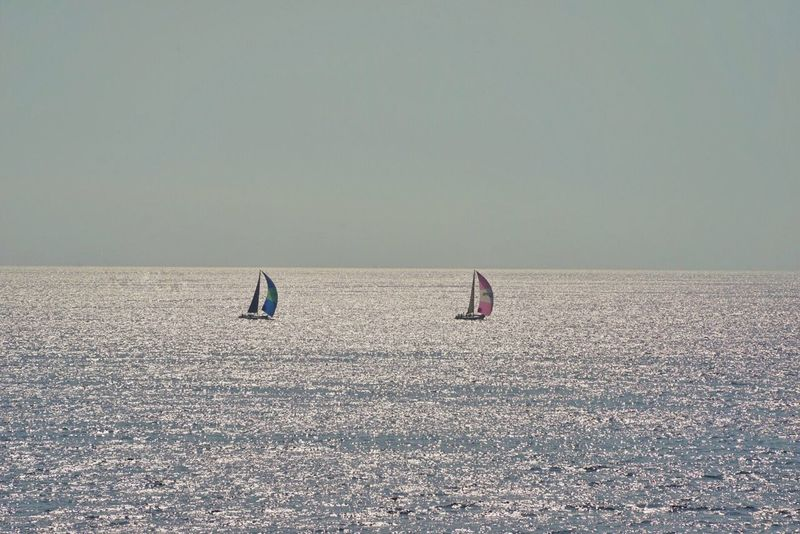 Sea Life Sea Horizon Over Water Nature Day Water Scenics Outdoors Tranquility Beauty In Nature Tranquil Scene Clear Sky Sky Waterfront Beach Adventure No People Nautical Vessel