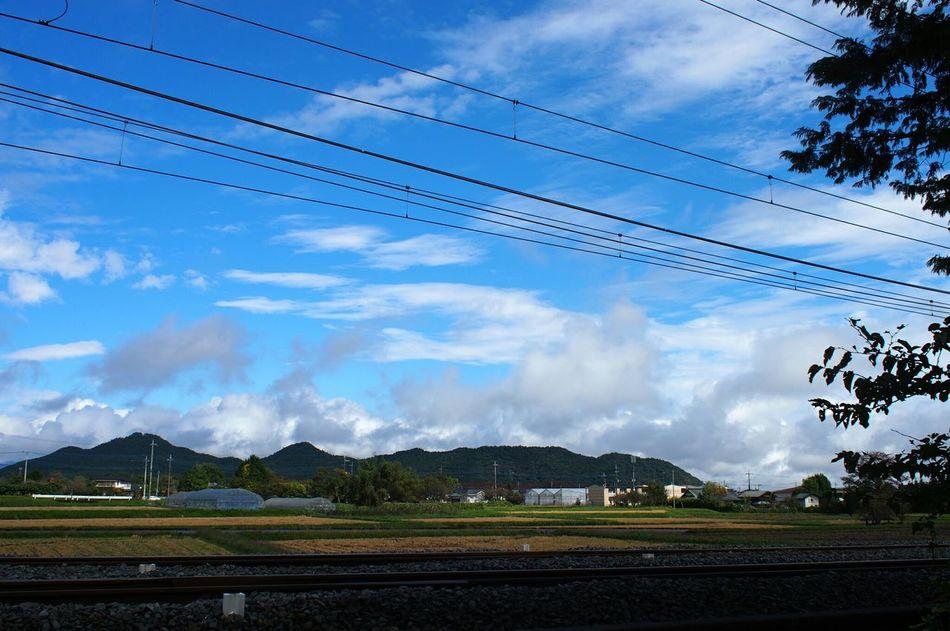 Clouds And Sky Sky 日光 Nikko 杉並木街道 Japan Photography Nature Photography Nature Japan EyeEm EyeEm Gallery