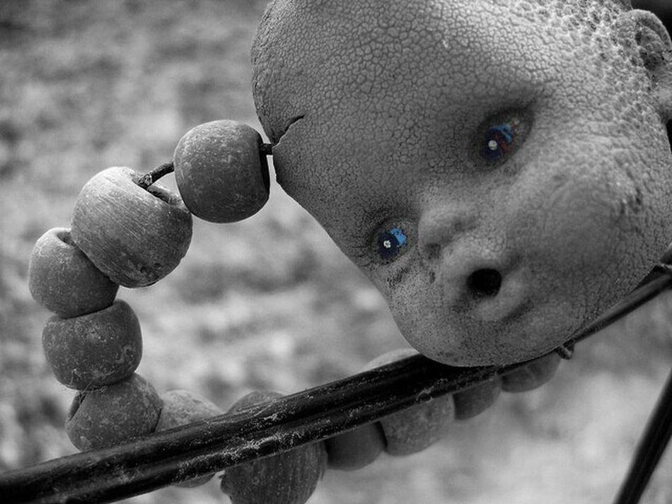 Bebek kafası Oyuncak Mavigoz Kafa Nazarboncugu HEAD Baby Toys BlueEyes