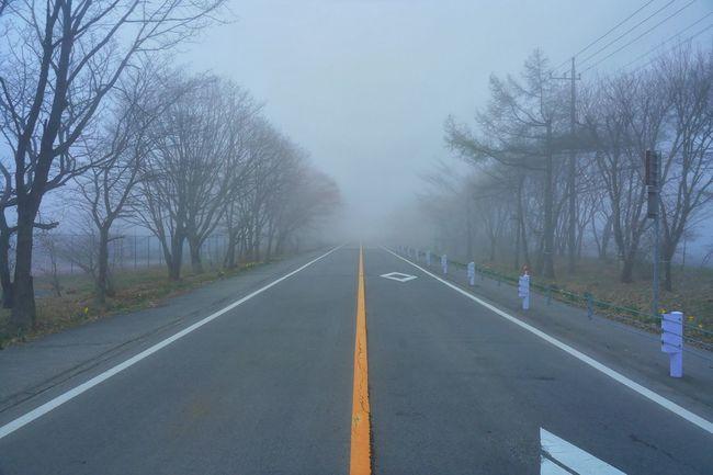 Street Photography Misty Landscape Misty Roads