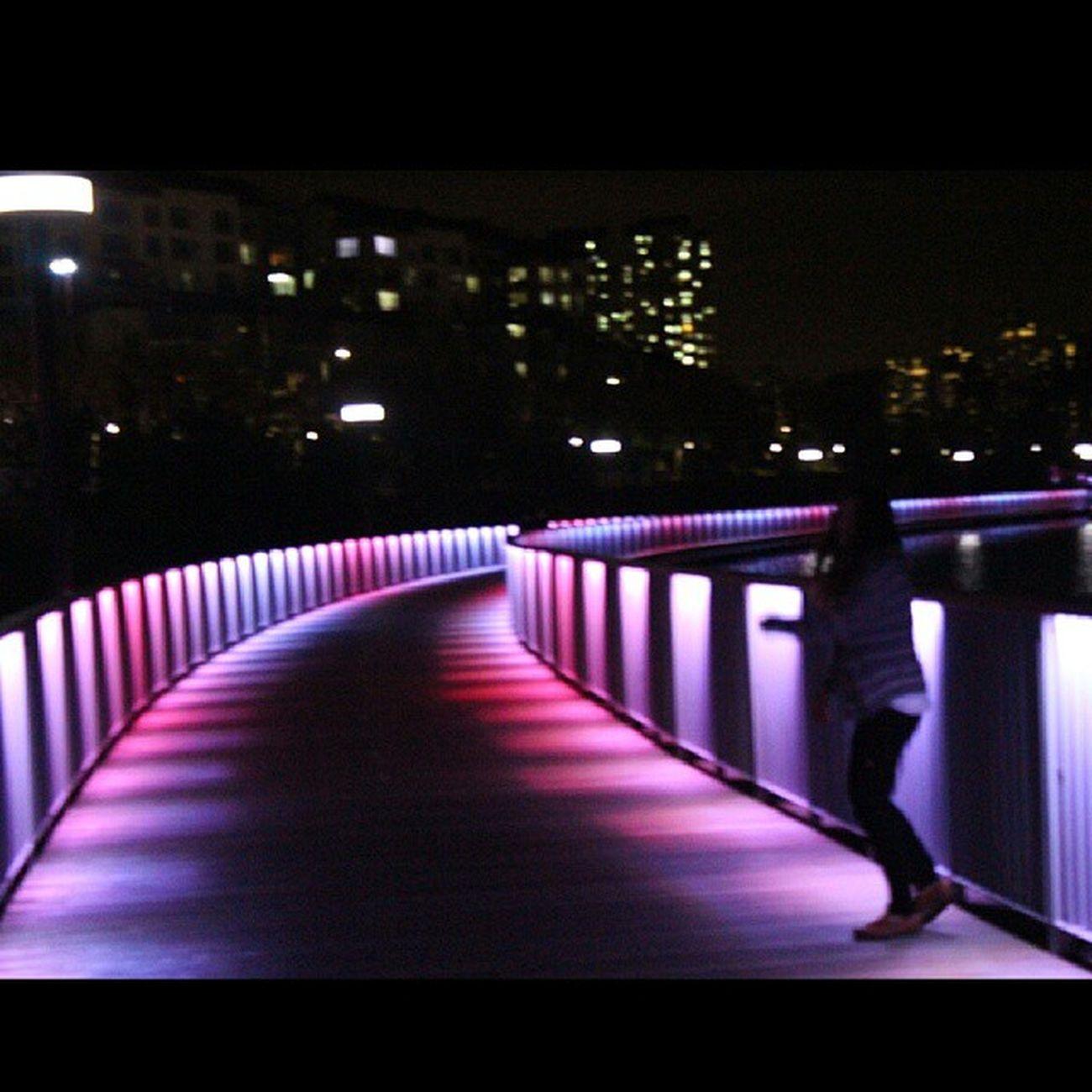 여기 너무맘에들어???광교 호수공원 야경🌉 드라이브🚗 산책? 散歩ドライブ綺麗