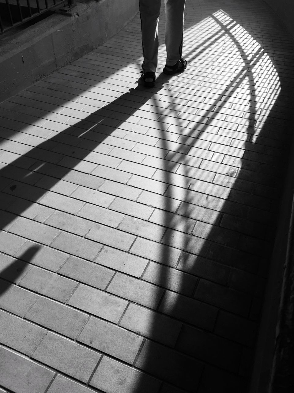 low section, human leg, real people, shadow, sunlight, walking, human body part, standing, lifestyles, women, leisure activity, day, indoors, men, adult, people