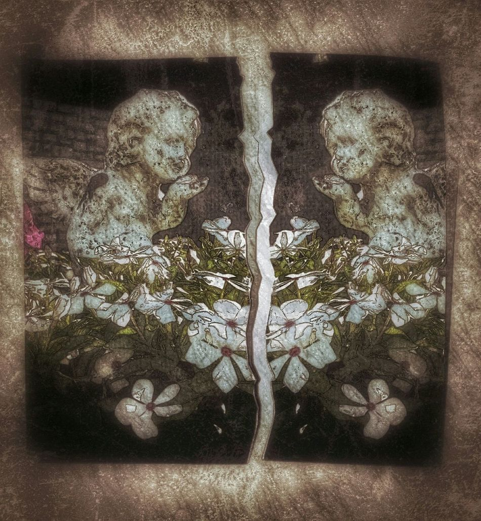 Grunge Grunge Angel Twins Vintage Retro Seperated Ripped Torn Apart Flowers