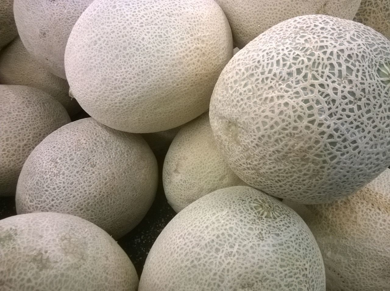 A bunch of cantaloupes. Cantaloupe Fruit No People Round Market Grocery Shopping Food Foodphotography Food Shopping Getty X EyeEm Getty Images Hungry Hunger Healthy Food Healthy