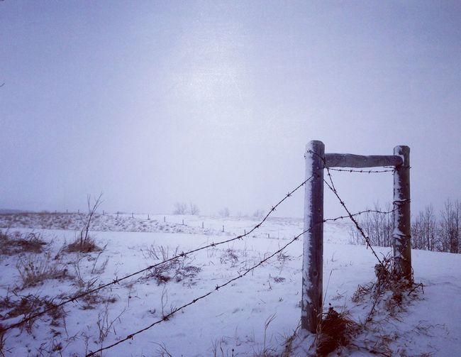Wide Open Spaces Winter Countryside Dogwalk EyeEm Nature Lover Rural Exploration Eye4photography