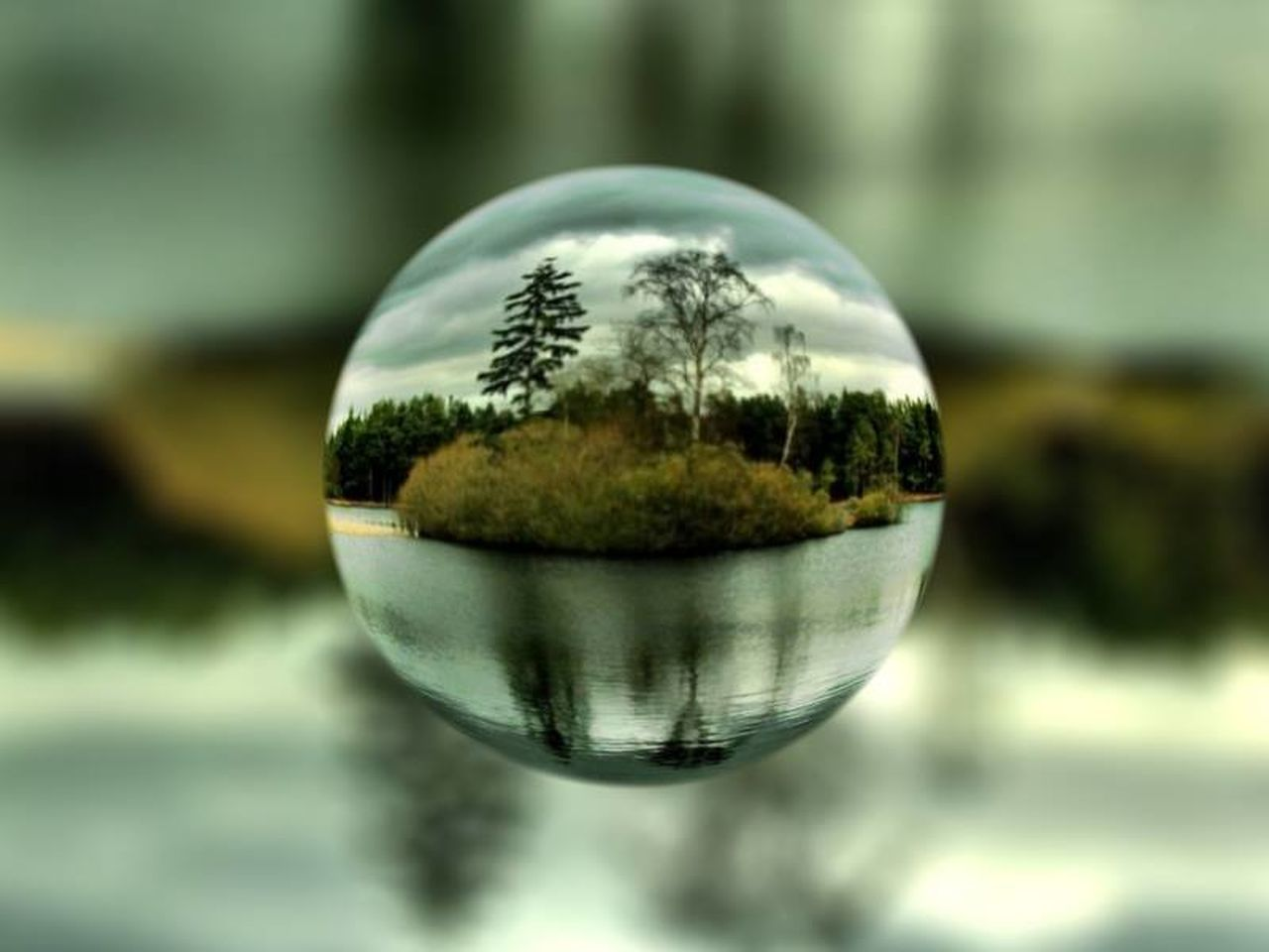 reflection, crystal ball, focus on foreground, close-up, no people, outdoors, day, water, tree, nature