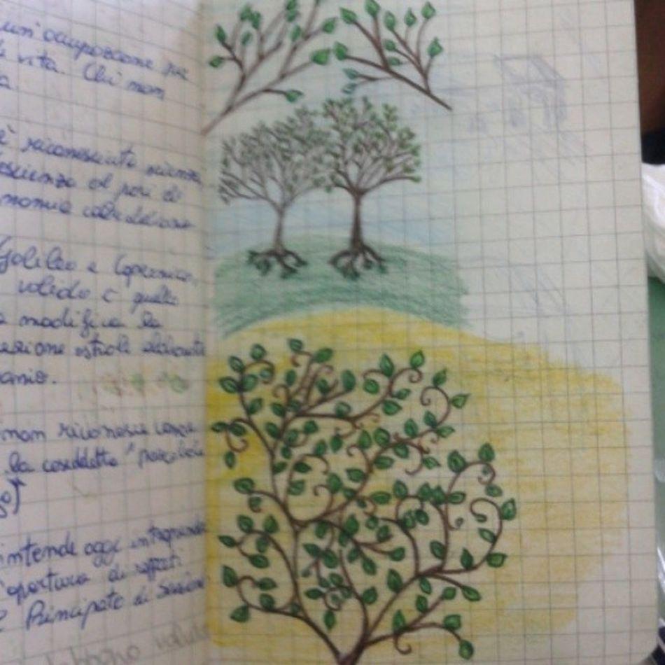 Drawing Writing Boredatschool