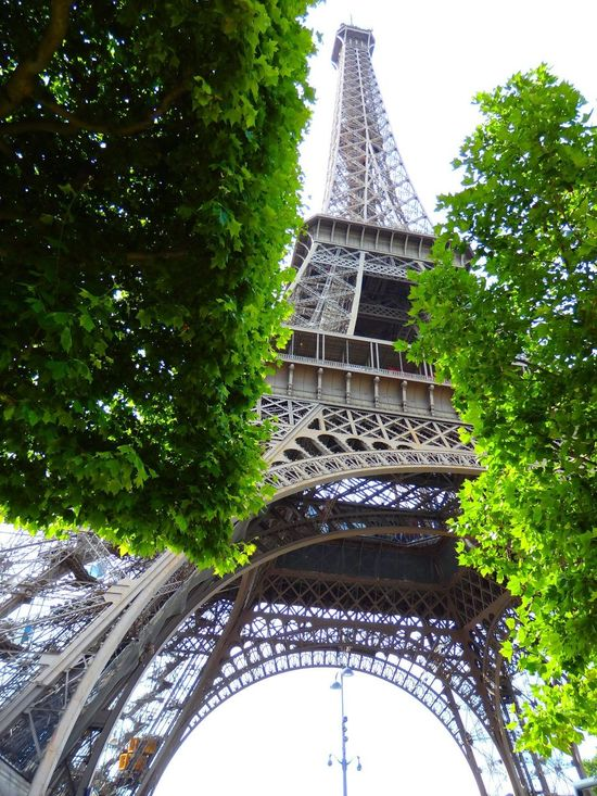 Different point of view! Different Perspective Different Points Of View Different Angle Eiffel Tower Greenery View And Eiffel Tower One Fine Day Travel Destinations Travel Europe Trip France City Of Lights NiceShot Enjoying Life