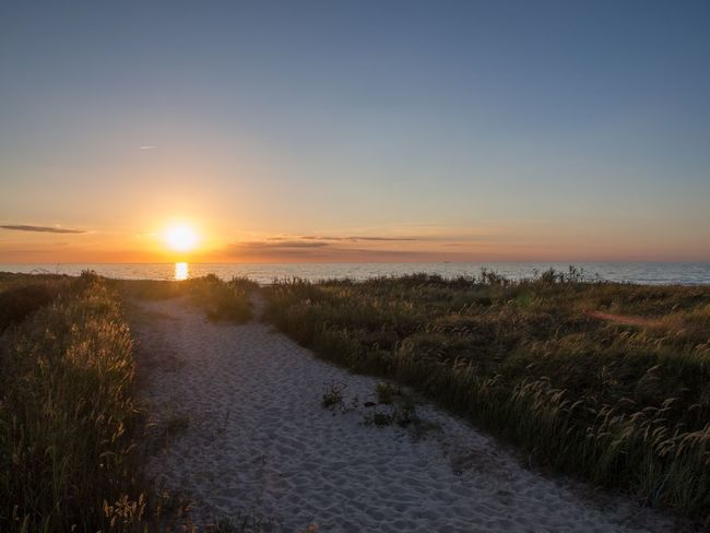 Sun☀️ Sunset Sun Tranquil Scene Grass The Way Forward Clear Sky Tranquility Beauty In Nature Scenics Copy Space Water Ostsee Kühlungsborn Sea Plant Footpath Countryside Blue Non-urban Scene Surface Level Long