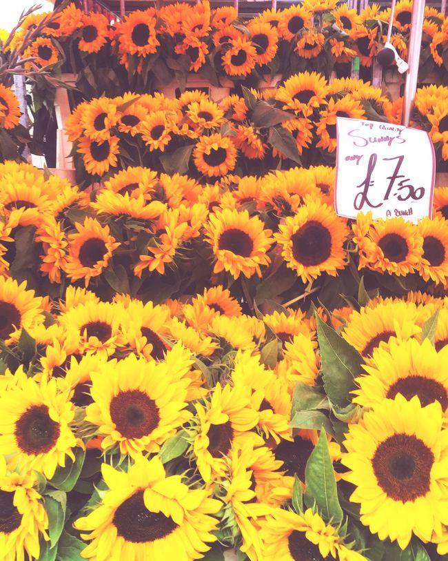 Columbia london flower market.. Love a good sunflower Flower Yellow Beauty In Nature Abundance First Eyeem Photo