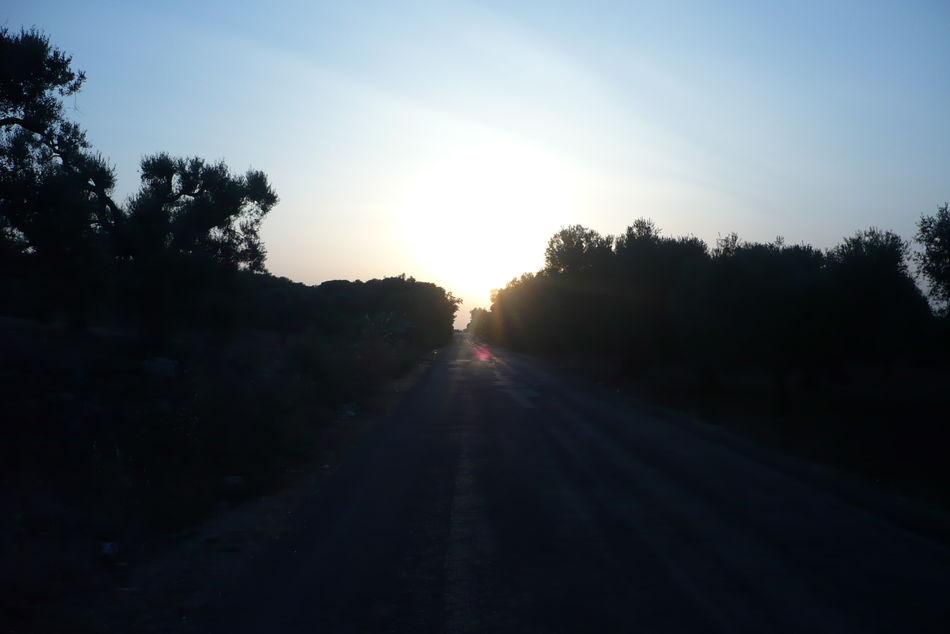 Itala Italy Landscape Naure Puglia Salento Sun Sunset