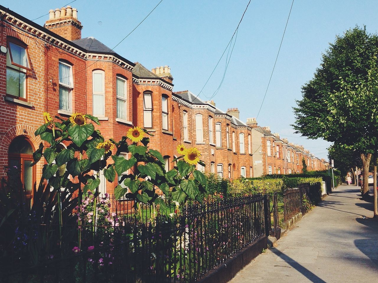 Beautiful stock photos of dublin, Architecture, Back Or Front Yard, Building Exterior, City