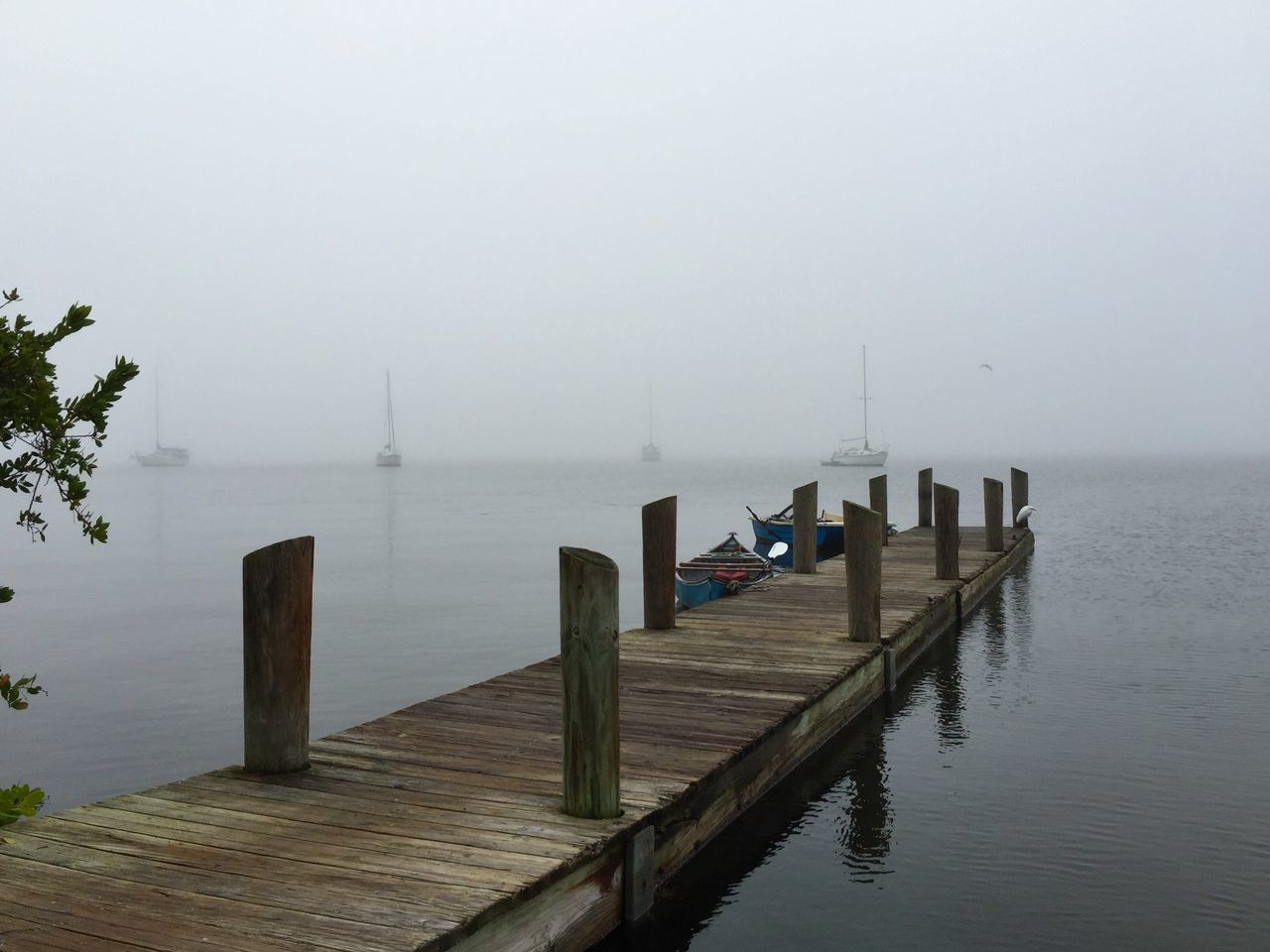 Fog on the River Found On The Roll Foggy Morning River View Dockside Sailboat Dingy Melbourne Beach, FL