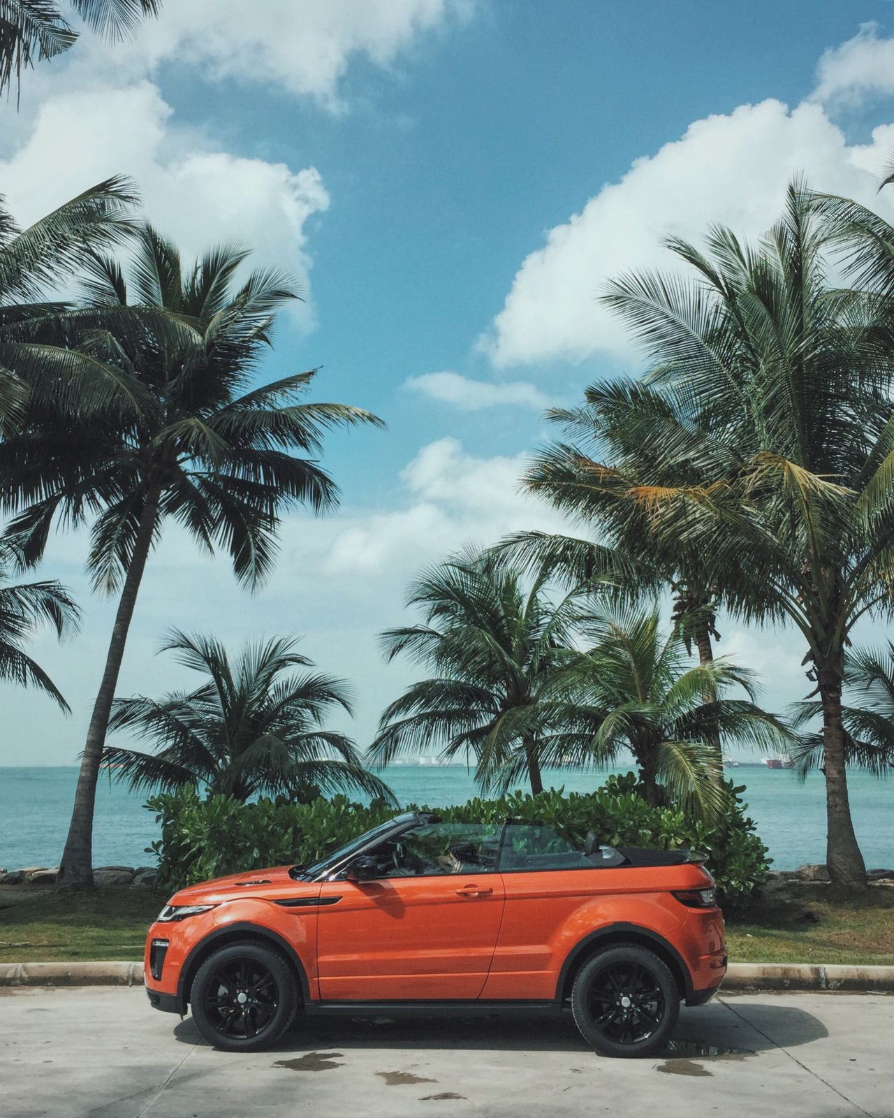 Asian beach car cloud - sky day evoque evoque convertible Land Rover land vehicle Nature no people outdoors Palm tree Sentosa Singapore sky summer The City Light Transportation Tree vacation